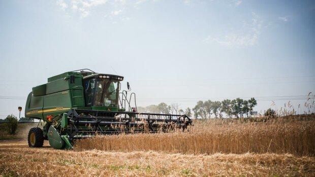 """Нові """"аграрні"""" законопроєкти: як фермери зможуть заробляти на своїй землі"""