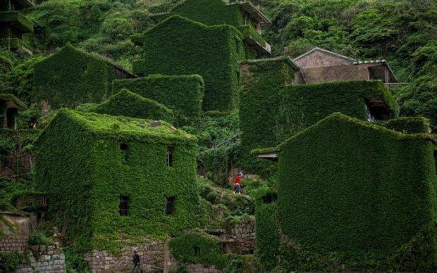 Деревня-призрак: как природа поглотила рыбацкий поселок