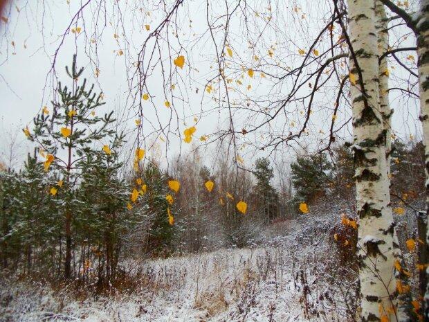 Погода в Украине, фото: ФотоКто