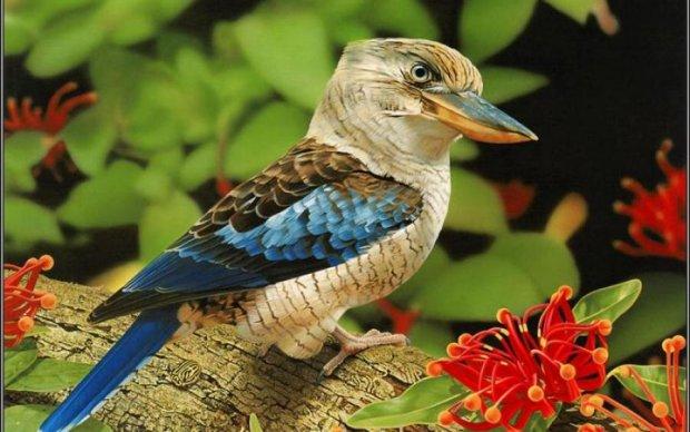 Від реготу цих птахів кров стигне в жилах: відео