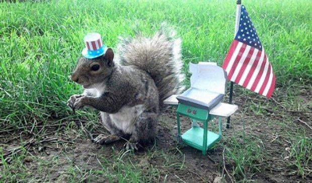 Кампус-білка позує для фотографа у  капелюсі та взутті (фото)