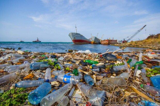 Мировой океан умирает из-за человеческого равнодушия, все живое под угрозой: это видео заставит задуматься