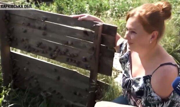 Харків'яни показали, як правильно їсти равликів: ви забудете про котлети