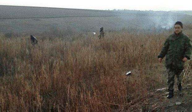 Міліція виявила 11 тисяч кущів коноплі на Луганщині (фото)