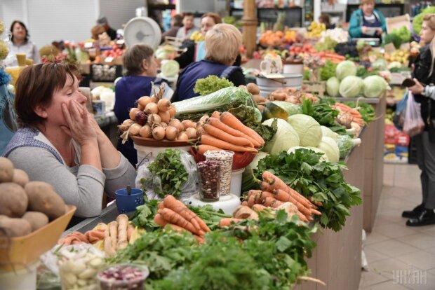 """Запорожцев накормят """"золотой"""" картошкой: цены бьют все рекорды, такого украинцы ещё не видели"""