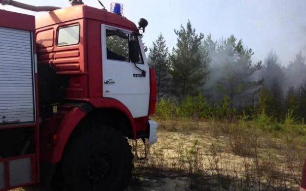 Не наши проблемы: Гройсман открестился от лесных пожаров