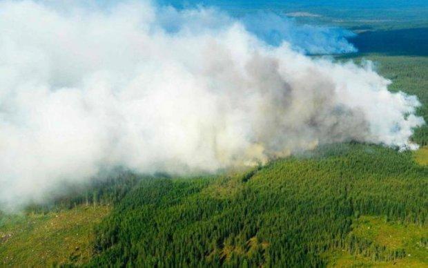 На ліси Швеції скинули бомби: що відбувається