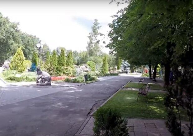 парк, скриншот из видео