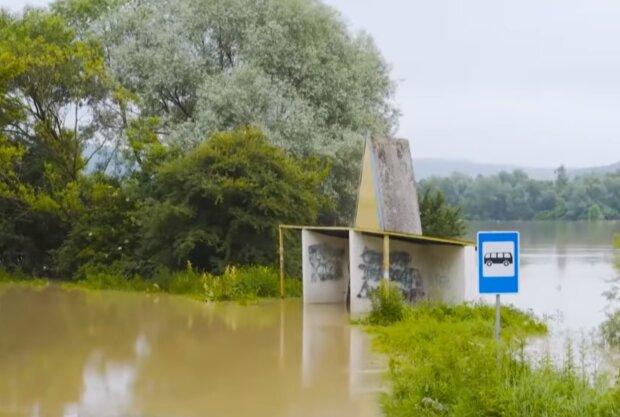 """Одіозна Ніцой знайшла винних у потопі на заході України - """"Плачуть перелякані діти"""""""