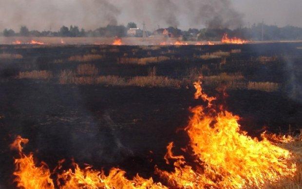 Последствия пожара на Осокорках показали с неба