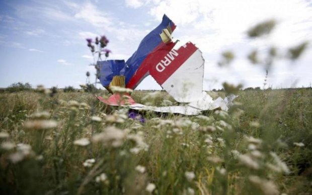 Катастрофа МН17: Нидерланды приняли судьбоносное решение