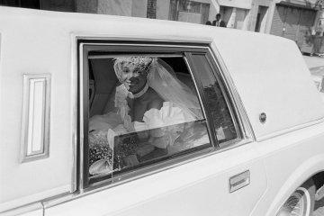 Голые Знаменитости В Лимузине Видео