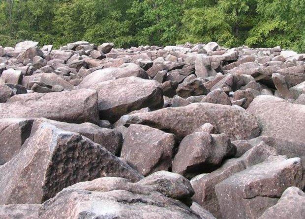 Каменеїдки стали реальністю: новий вид істот шокував науковий світ