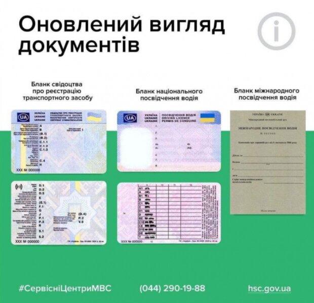 Обновленный вид документов, фото: www.kmu.gov.ua