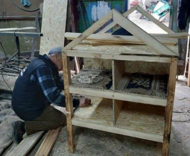 Тернополяне создали райский дом для котов, мурчики в восторге