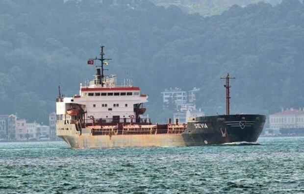 Судно Stevia, фото: facebook.com/seafarersjournal