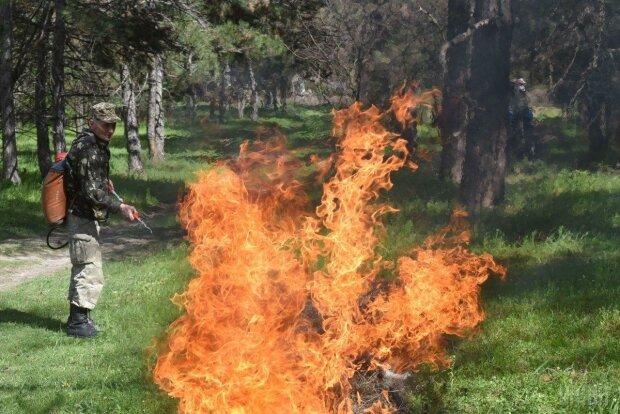 Может выгореть дотла: над Киевом нависла угроза пожаров, спасатели умоляют не шутить