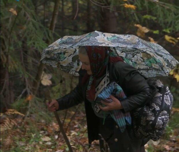 Буковинка преодолела пять километров леса, чтобы проголосовать на выборах, скриншот