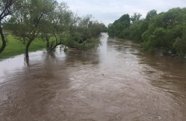 Страшна знахідка українських поліцейських: тіло дитини виловили з річки, батьків шукають навіть в інших країнах