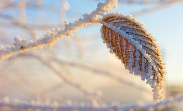 Гулять, так гулять: зима устроит теплый уик-энд харьковчанам 8 декабря