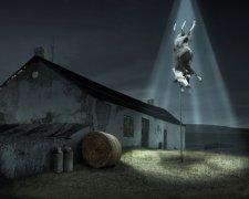 викрадення тварин прибульцями