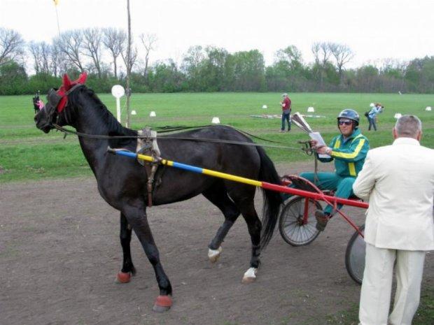 На Полтавщині пройшли кінні перегони імені російського князя