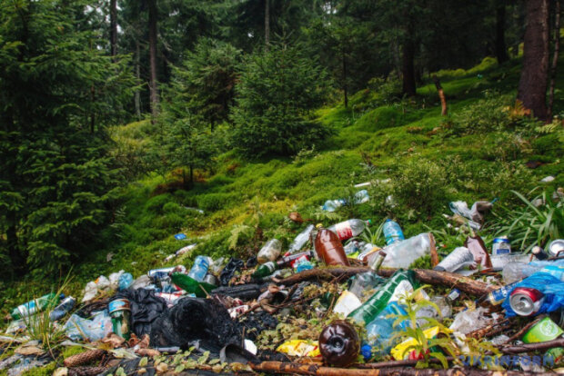 Франківчани оголосили війну свинству в Карпатах: як танули гори сміття, - надихаючі кадри