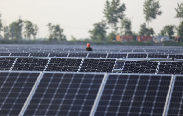 Сонячні панелі зелена енергетика // фото Getty Images