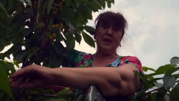 """62-річна Наталія Фаліон з """"Лісапетного батальйону"""" осідлала черешню: """"Відро на голову"""""""