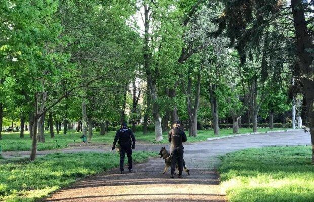 """На Одесчине поймали вооруженного до зубов преступника, до трагедии оставался один шаг: копы оторопели от """"коллекции"""""""