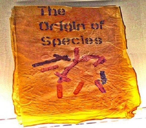 Из бактерий вырастили книгу