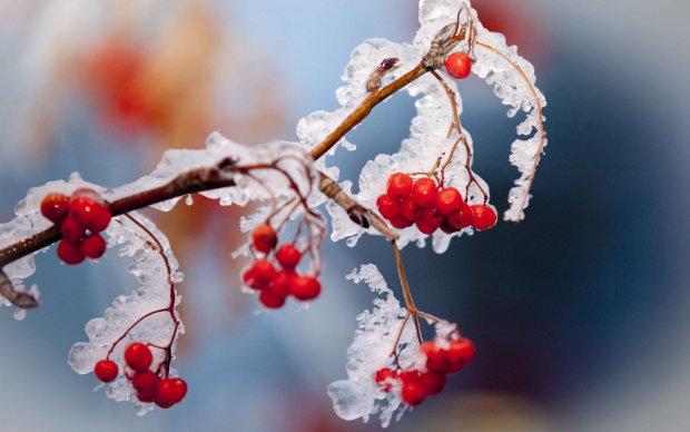 Погода на 25 сентября: осень перепуталась с зимой