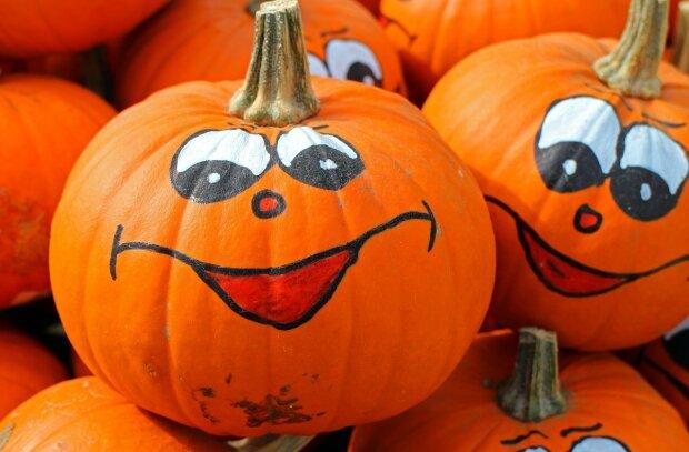 В честь Хэллоуина зверушек из киевского зоопарка накормят тыквой: фото