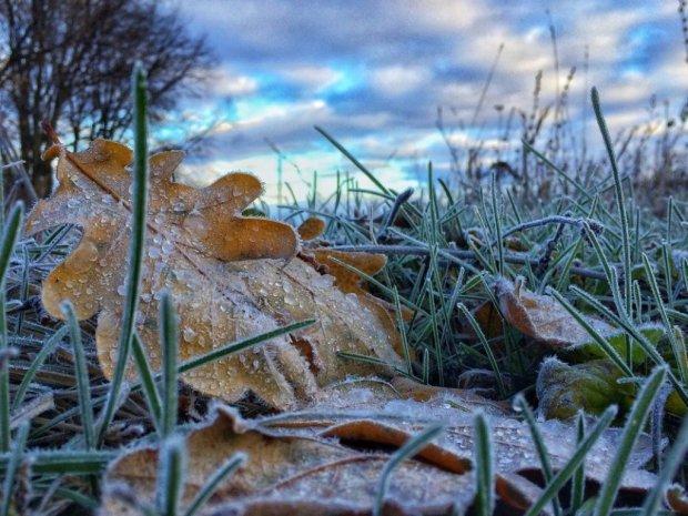 Погода на 10 листопада: морози продовжують наступати