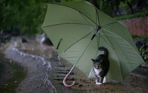 Діставайте парасолі і куртки: погода приготувала сюрприз на вихідні