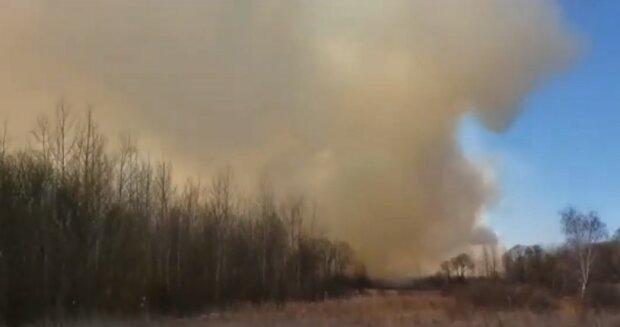 Пожежа в Україні, скріншот відео