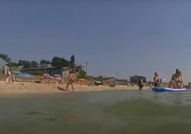 Креветки в Кирилловке, скриншот: YouTube