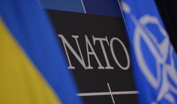 Україна через п'ять років буде готова до вступу у НАТО