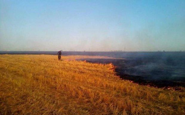 Масштабный пожар под Николаевом уничтожил техники на сотни тысяч долларов