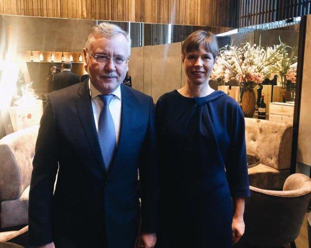 Гриценко обговорив із Президентом Естонії загрози в Європі з боку Росії