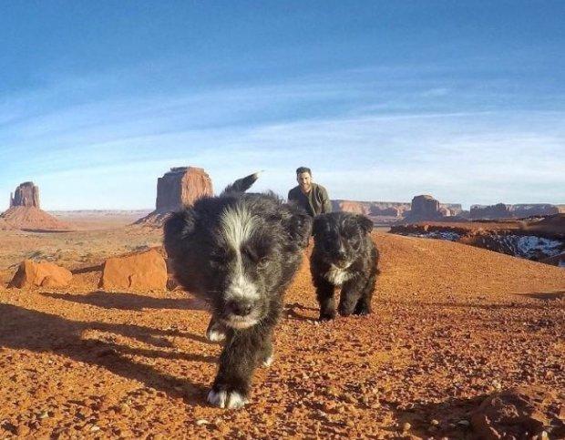 Сила доброй души: парень нашел щенков, брошенных на произвол судьбы, и показал им весь мир, невероятные фото