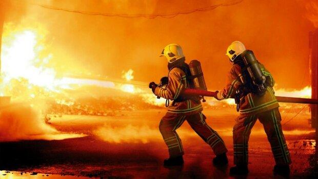 Київські пожежники роздяглися під ялинкою і показали потужні шланги: дівчата, спокійно, - дуже гарячі фото
