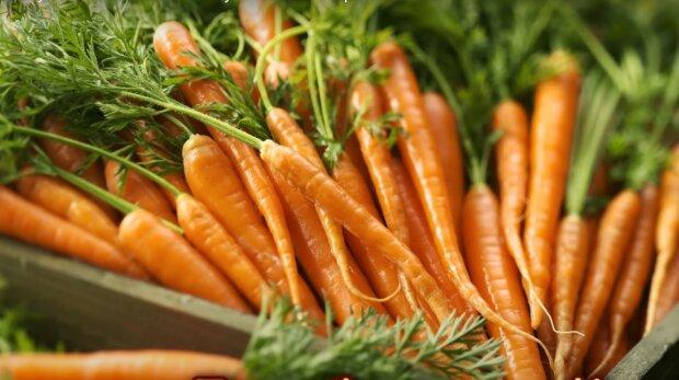 морква, скріншот з відео