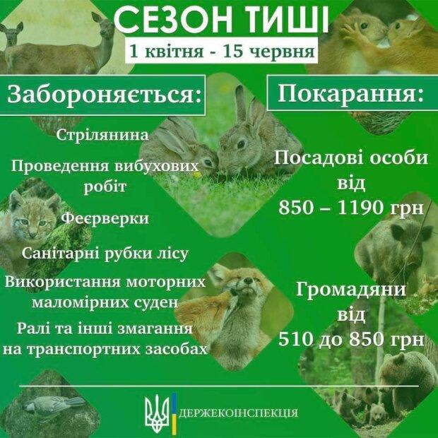 Публікація Єгора Фірсова, скріншот: Facebook