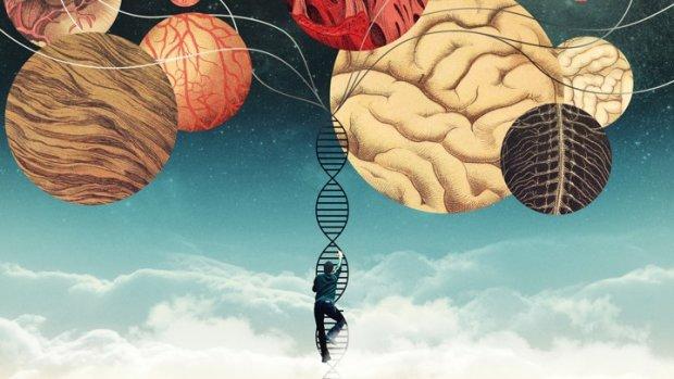 Тридцять божевільних генів: вчені вирахували всіх винуватців страшного психозу