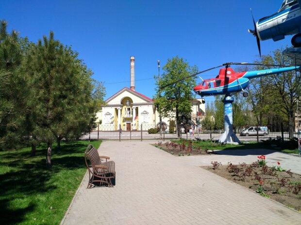 Весна у жовтні: в Запоріжжі розквітла фіалка, яскраві фото