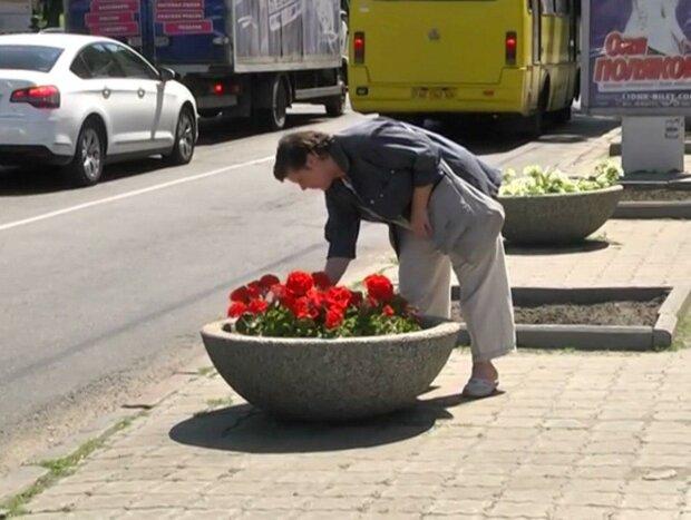 У Дніпрі бабці вирішили підзаробити, пограбувавши сусідів - квіткова афера накрилася мідним тазом