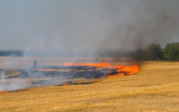Пекло на землі: український регіон охопили жахливі пожежі
