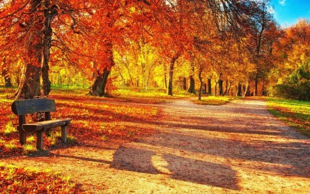 Погода на 27 октября: к нам идет тепло