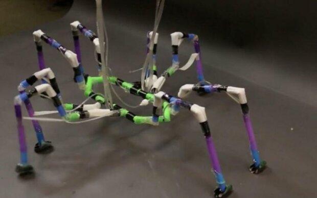 Роботов научились делать из неожиданного материала